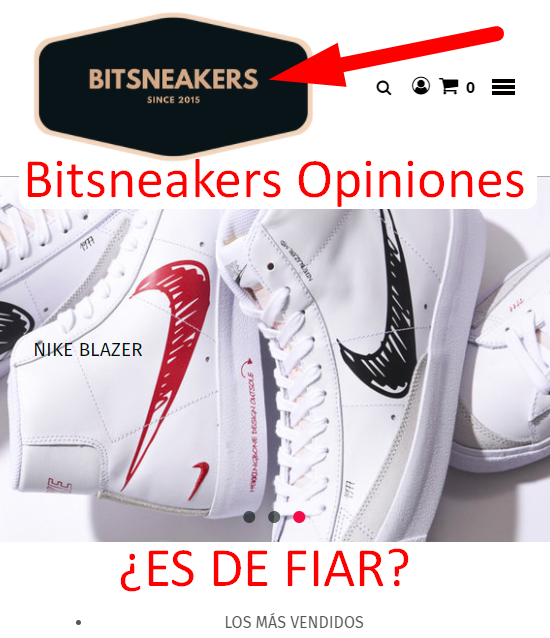Bitsneakers Opiniones